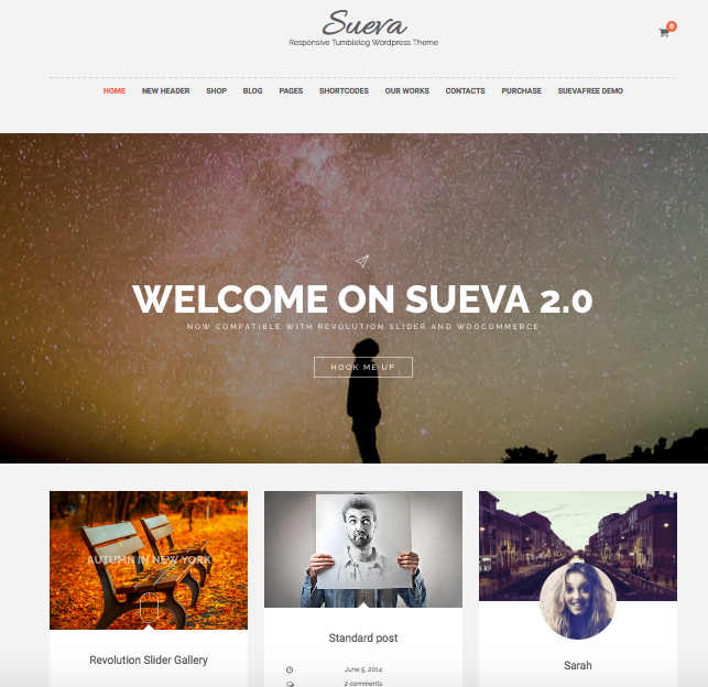 Sueva free theme wordpress