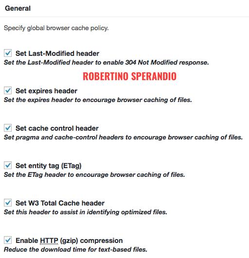 browser-cache-gzip-w3tc